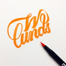 Wlunds logo sketch